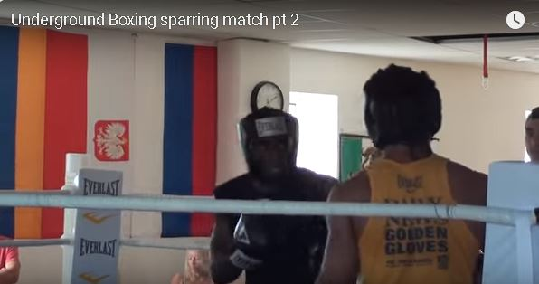 Sparring adults Part 2
