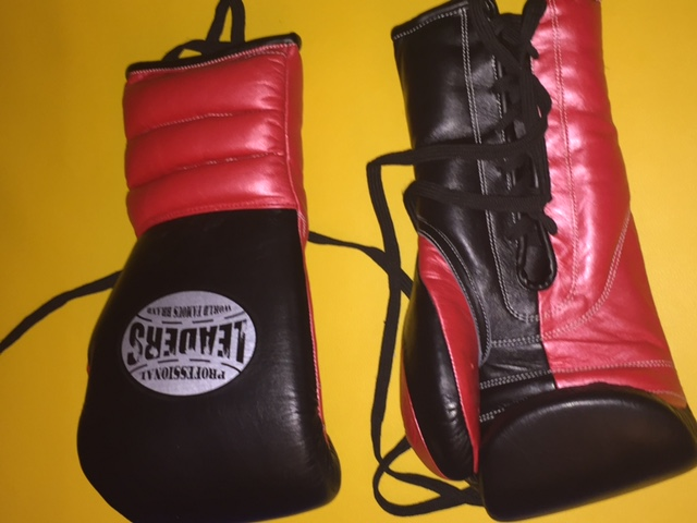 Black Red Sparring Gloves