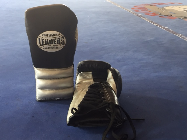 Black White Sparring GlovesSimple Description